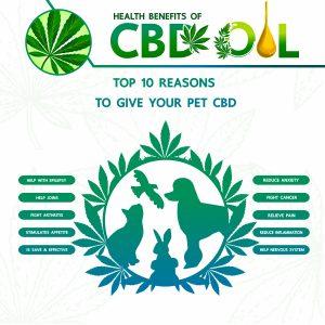 LIV CBD CBD for pets